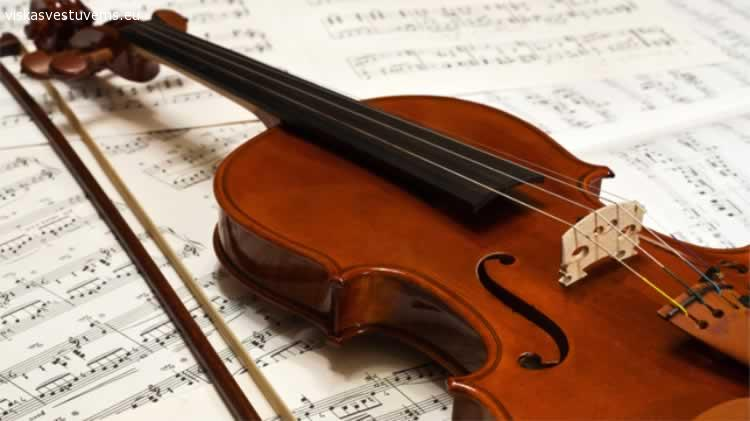 Smuiko ir akordeono muzika